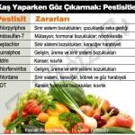 Kaş Yaparken Göz Çıkarmak: Pestisitler