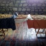 Adatepe Taşmektep'te Ekmek ve Kışa Hazırlık Atölyesi