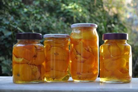 turuncgilli-yuzey-temizleyici-yilbasi