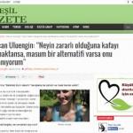 Zehirsiz Ev, Yeşil Gazete'de